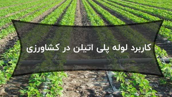 کاربرد لوله پلی اتیلن در کشاورزی